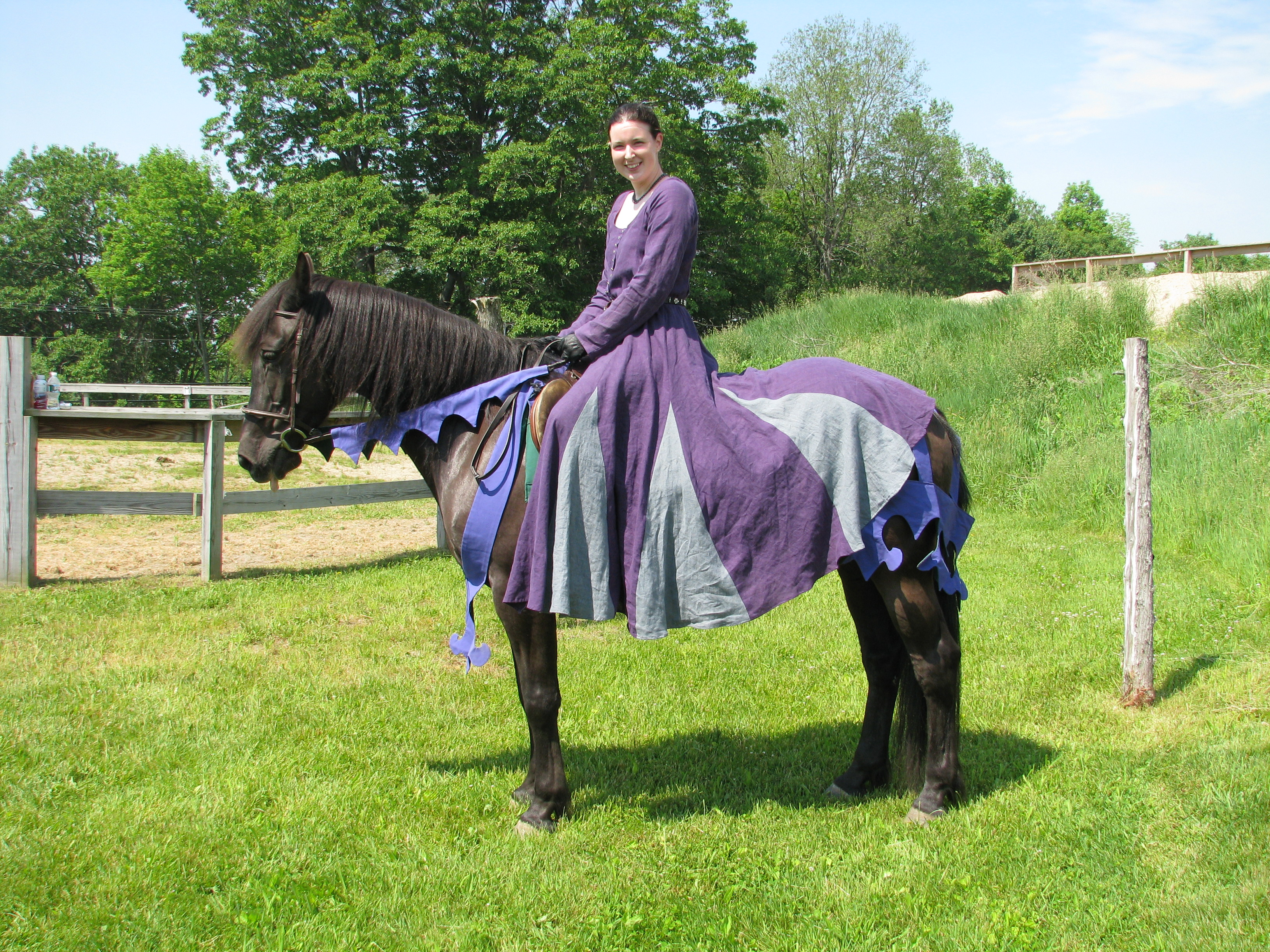 Riding Gown (Purple/Grey and Green/Black) | Isabelle\'s Journal